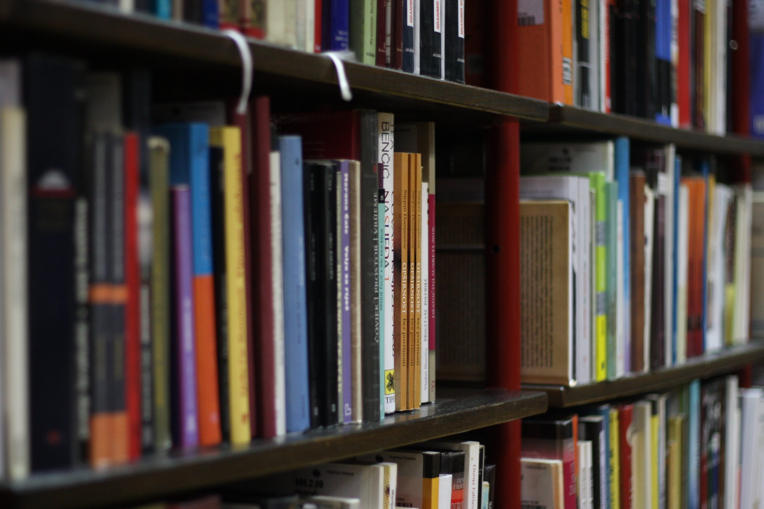 Dzieje biblioteki w Łochowie